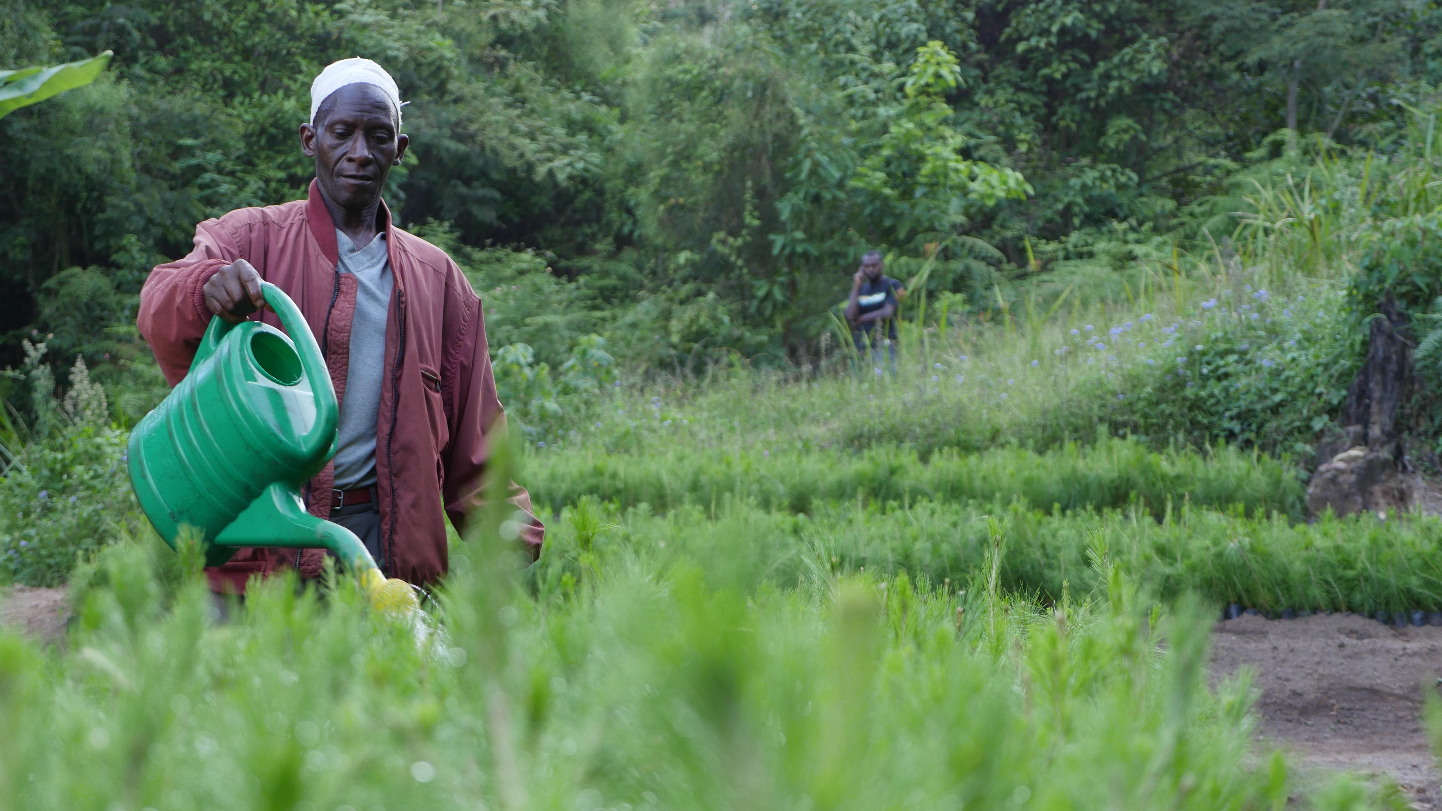 Tanzania-2017-Ecosia--35-of-69-