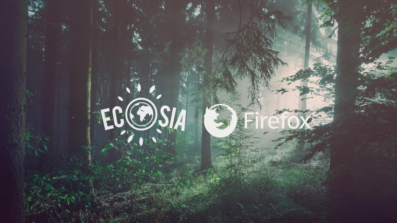 Ecosia is now an official search option in Firefox Germany!
