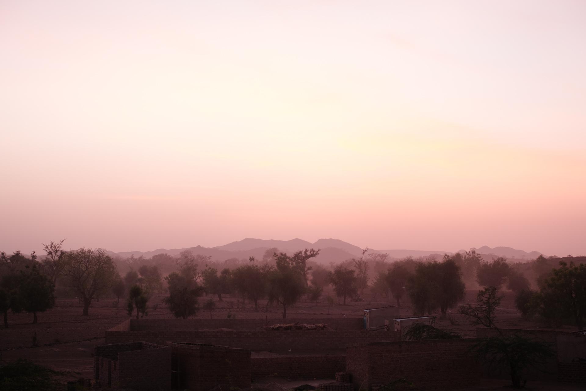 Burkina-Faso-Trees-Reforestation-Ecosia--13-of-38-