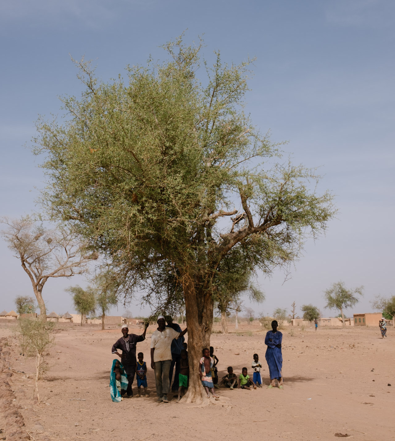 Burkina-Faso-Trees-Reforestation-Ecosia--35-of-38--1