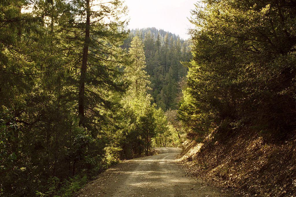 Klamath_National_Forest-Ecosia